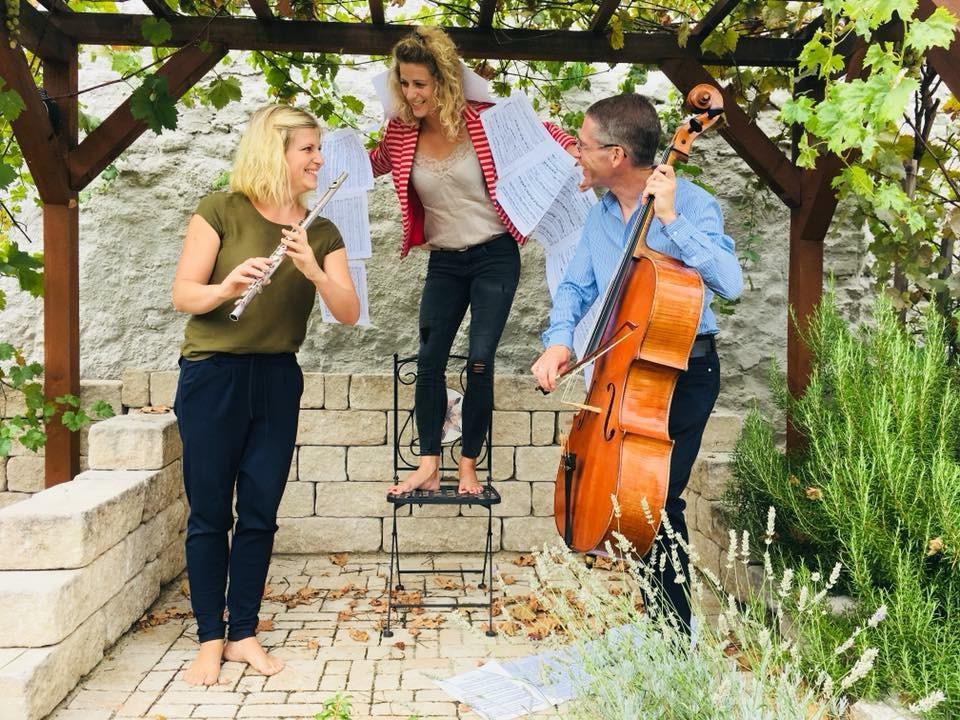 Die Haydn Stars >>>